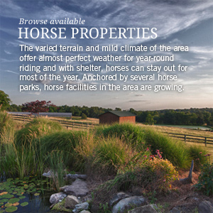Browse available horse farms in the area.