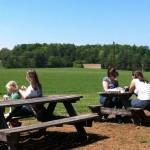 Maple View Farms