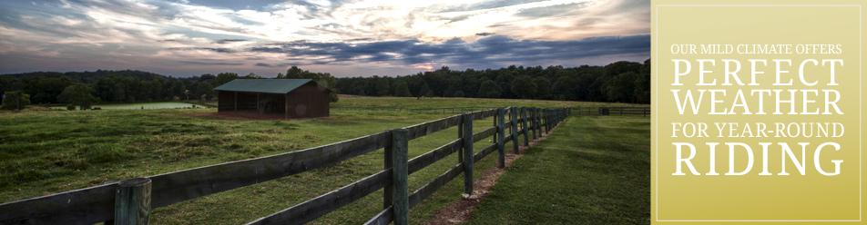 horsefarm-banner-2