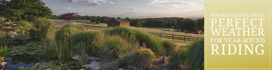 horsefarm-banner-3