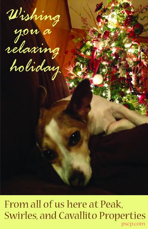 Christmas Card B